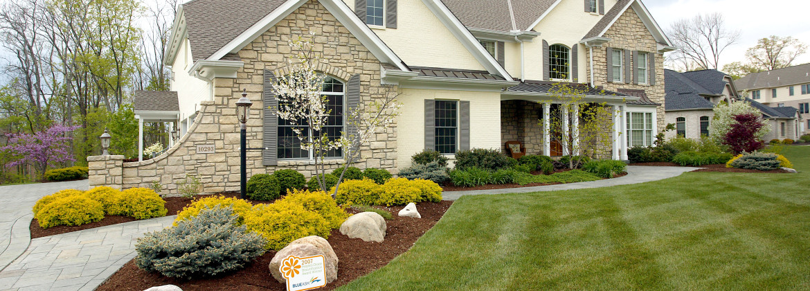 Keep the Grass Greener on Your Side: The Best Way to Water Your Yard